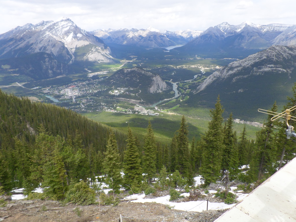 Top of Sulphur Mountain 2